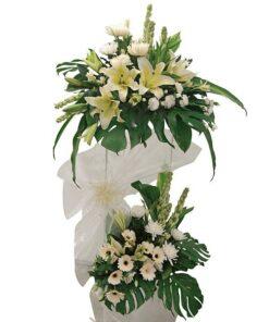 Condolence & Funerals