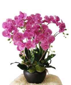 Artificial Congratulations Flowers